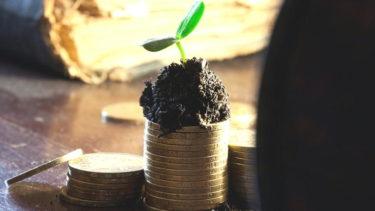 お財布のお金が増える魔法「種銭」の作り方と取扱い方法について